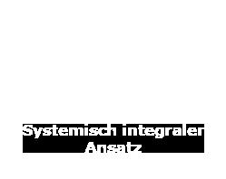 Ein systemischer Ansatz unterstützt die Umsetzung und Vorgehenweise in allen Maßnahmen